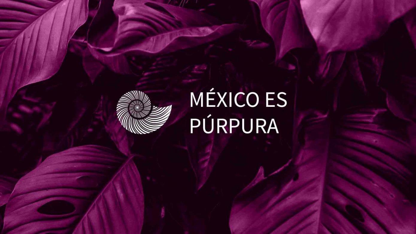 purpura-mixteco-artesanas-oaxaca-méxico-moda-de-lujo-purpura-artesanos-mexicanos-oaxaca