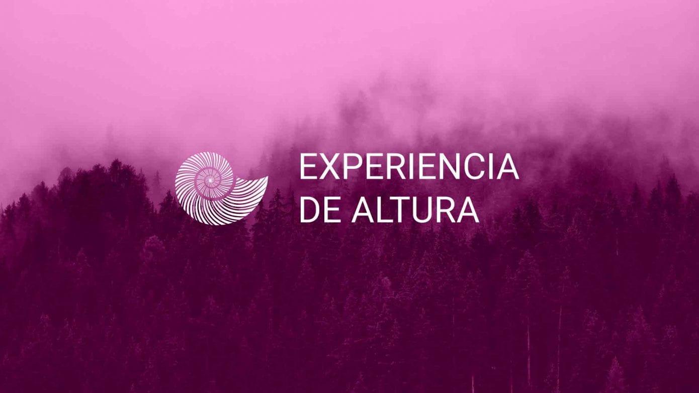 PÚRPURA--mixteco-artesanos-de-oaxaca-lujo-artesanal