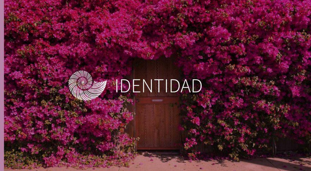 púrpura-mixteco-identidad-oaxaca-moda