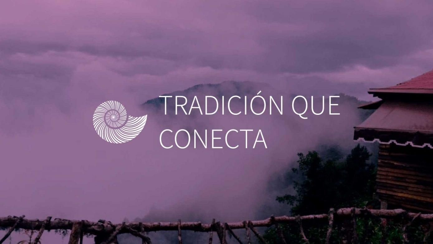 purpura-mixteco-oaxaca-artesanos