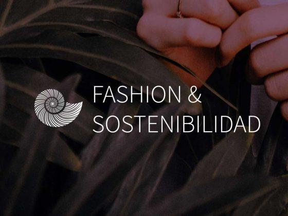 purpura-mixteco-huipil-embroidery-slow-fashion